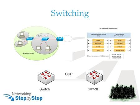 Switching Switch CDP. Broadcast and Collision MAC.