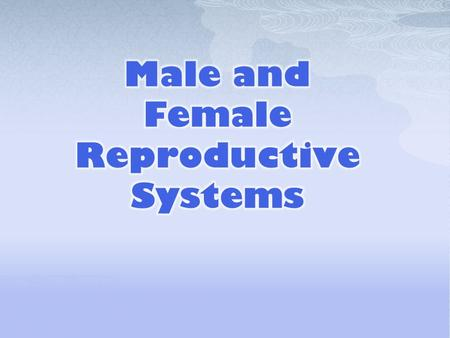  Why is it important to know and understand the functions of the male reproductive system (MRS)?