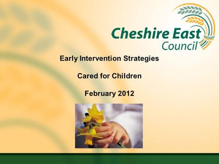 Early Intervention Strategies Cared for Children February 2012.