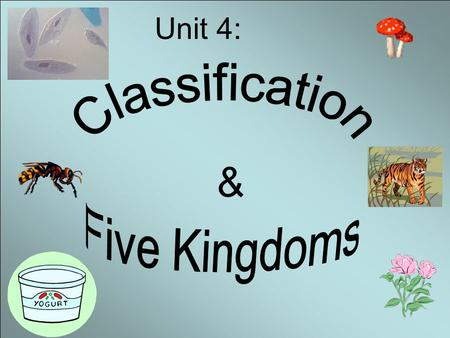 & Unit 4:. Objectives: 1.Know the founder of classification. 2. Know the seven levels of classification. 3. Know how to name organisms using scientific.