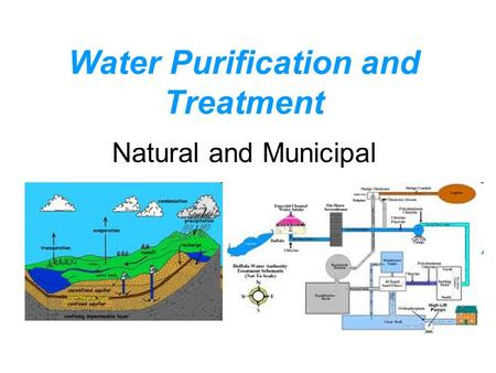 Water Purification and Treatment Natural and Municipal.