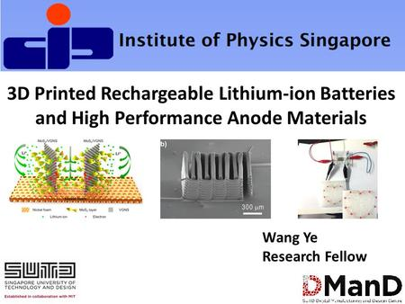 3D Printed Rechargeable Lithium-ion Batteries and High Performance Anode Materials Wang Ye Research Fellow.