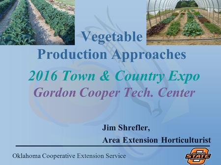 Oklahoma Cooperative Extension Service Vegetable Production Approaches Jim Shrefler, Area Extension Horticulturist 2016 Town & Country Expo Gordon Cooper.