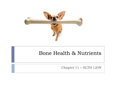 Bone Health & Nutrients Chapter 11 – HLTH 120N. What do you know about your bones?  What is peak bone density?  At about what age do you reach it? 
