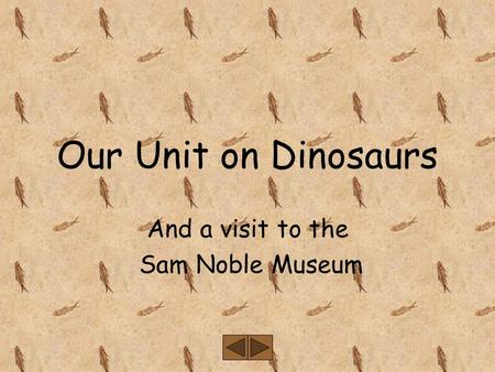 Our Unit on Dinosaurs And a visit to the Sam Noble Museum.