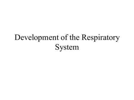 Development of the Respiratory System. During the 4 th week the respiratory diverticulum develops as an outgrowth from the ventral wall of the foregut.