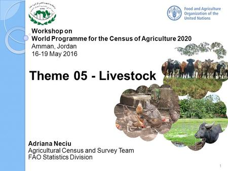 Workshop on World Programme for the Census of Agriculture 2020 Amman, Jordan 16-19 May 2016 Adriana Neciu Agricultural Census and Survey Team FAO Statistics.