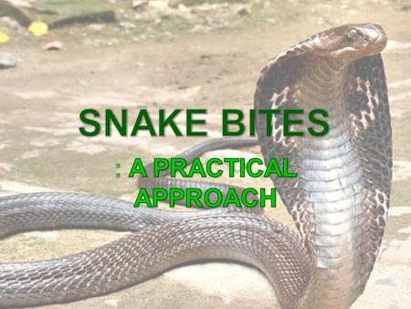  2,00,000 snake bites and 15-20,000 deaths per year  Males : Females :: 2:1  Majority of bites occur on the lower extremities  50% of bites by venomous.