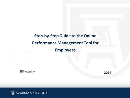 Step-by-Step Guide to the Online Performance Management Tool for Employees 2016.