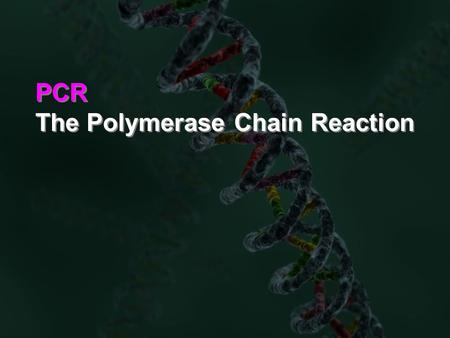 PCR The Polymerase Chain Reaction PCR The Polymerase Chain Reaction.