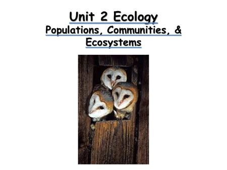 Unit 2 Ecology Populations, Communities, & Ecosystems.