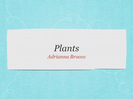 Plants Adrianna Brocco. Organisms An organism is a living thing. Plants and animals are organism. All organism have cells.