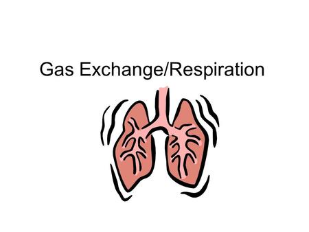 Gas Exchange/Respiration. Gas Exchange =Exchange CO 2 for O 2 =Need Respiratory Surface –Needs to be thin for diffusion –Needs to be moist for diffusion.