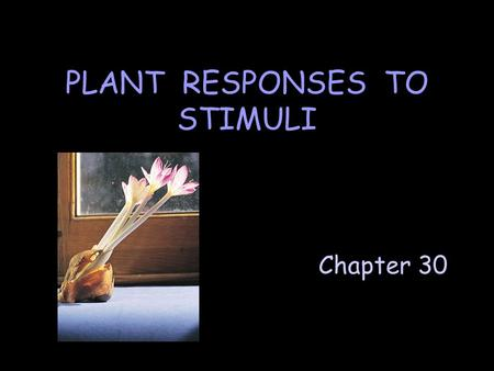 Chapter 30 PLANT RESPONSES TO STIMULI. A. Hormones and Plant Growth Hormone = a chemical messenger produced in one part of a plant & usually transported.