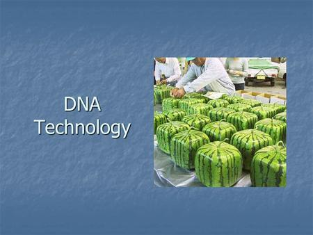 DNA Technology. Definitions Genetic engineering - process of altering genes to combining DNA from two or more organisms. Genetic engineering - process.