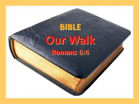 BIBLE Our Walk Romans 6:4 BIBLE Our Walk Romans 6:4.