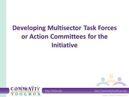 Developing Multisector Task Forces or Action Committees for the Initiative.