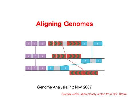 Aligning Genomes Genome Analysis, 12 Nov 2007 Several slides shamelessly stolen from Chr. Storm.