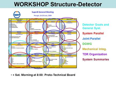 Detector Goals and General Syst. System Parallel Joint Parallel DGWG Mechanical Integ. TDR Organization System Summaries WORKSHOP Structure-Detector +