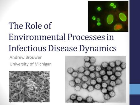 The Role of Environmental Processes in Infectious Disease Dynamics Andrew Brouwer University of Michigan.