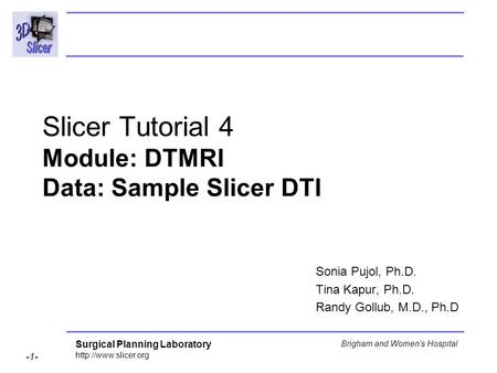 Surgical Planning Laboratory  -1- Brigham and Women's Hospital Slicer Tutorial 4 Module: DTMRI Data: Sample Slicer DTI Sonia Pujol,