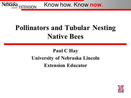 Know how. Know now. Pollinators and Tubular Nesting Native Bees Paul C Hay University of Nebraska Lincoln Extension Educator.