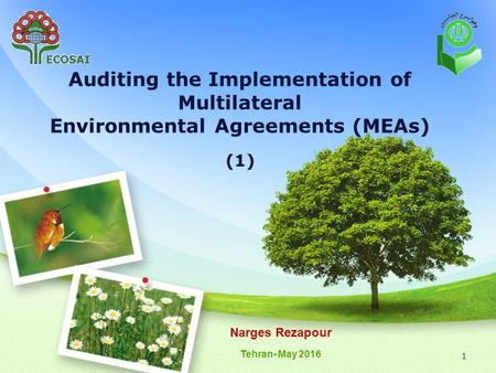 1 Auditing the Implementation of Multilateral Environmental Agreements (MEAs) (1) Narges Rezapour Tehran- May 2016.