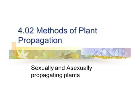 4.02 Methods of Plant Propagation Sexually and Asexually propagating plants.