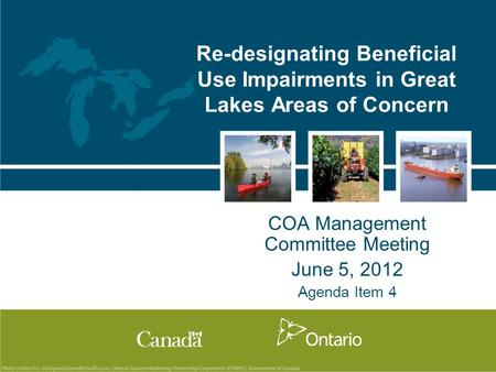 Re-designating Beneficial Use Impairments in Great Lakes Areas of Concern COA Management Committee Meeting June 5, 2012 Agenda Item 4.
