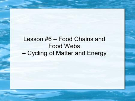 Lesson #6 – Food Chains and Food Webs – Cycling of Matter and Energy.