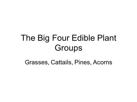 The Big Four Edible Plant Groups Grasses, Cattails, Pines, Acorns.