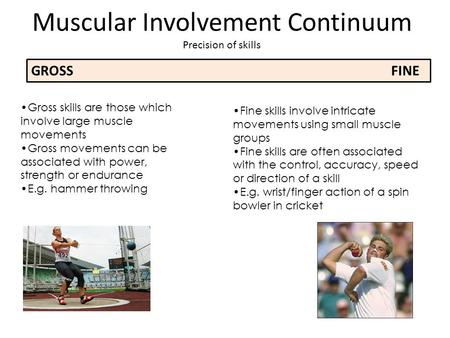 Muscular Involvement Continuum Precision of skills GROSSFINE Gross skills are those which involve large muscle movements Gross movements can be associated.