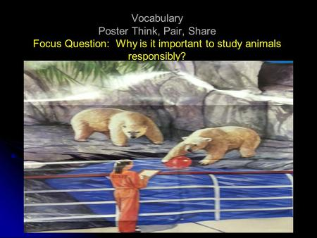 Vocabulary Poster Think, Pair, Share Focus Question: Why is it important to study animals responsibly?