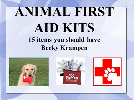 ANIMAL FIRST AID KITS 15 items you should have Becky Krampen.