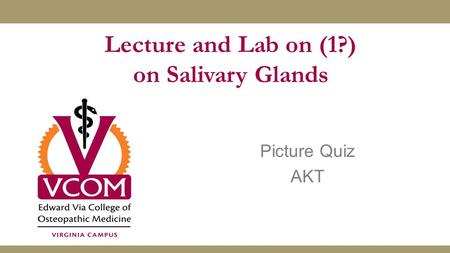 Picture Quiz AKT Lecture and Lab on (1?) on Salivary Glands.