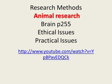 Animal research Research Methods Animal research Brain p255 Ethical Issues Practical Issues  pBPavEDQCk.