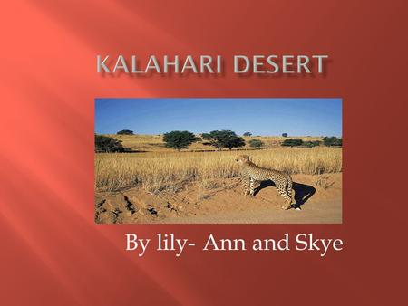 By lily- Ann and Skye.  The only permanent river that flows through the desert is the Okavango River.  The Kalahari desert is home to many big cats.