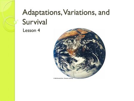 Adaptations, Variations, and Survival Lesson 4. Your Standard: Analyze structural, behavioral, and physiological adaptations to predict which populations.