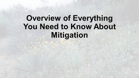 Overview of Everything You Need to Know About Mitigation.
