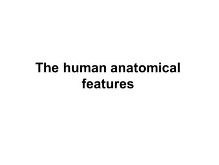 The human anatomical features. major systems of the human body are Cardiovascular system: the blood circulation with heart, arteries and veins Digestive.
