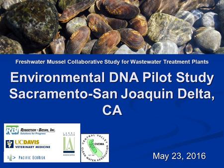 Freshwater Mussel Collaborative Study for Wastewater Treatment Plants May 23, 2016 May 23, 2016 Environmental DNA Pilot Study Sacramento-San Joaquin Delta,