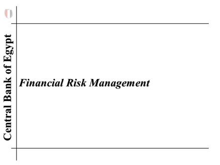 Central Bank of Egypt Financial Risk Management Financial Risk Management.