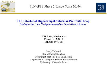SyNAPSE Phase 2: Large-Scale Model HRL Labs, Malibu, CA February 17, 2010 HRL0011-09-C-001 The Entorhinal-Hippocampal-Subicular-Prefrontal Loop Multiple-Decision.