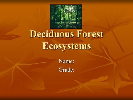 <strong>Deciduous</strong> <strong>Forest</strong> Ecosystems Name:Grade:. Temperate <strong>Deciduous</strong> <strong>Forest</strong> The <strong>deciduous</strong> <strong>forest</strong> has four distinct seasons: spring, summer, autumn, and winter.