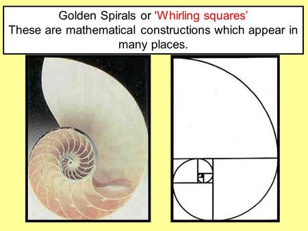 Golden Spirals or 'Whirling squares' These are mathematical constructions which appear in many places.