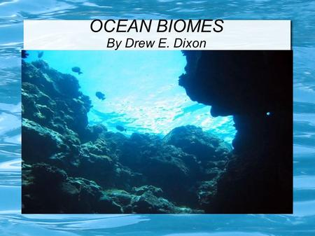 OCEAN BIOMES By Drew E. Dixon. Animals of the ocean The barracuda is one of the deadliest animal in the ocean they can swim up to 20 miles per hour. Their.