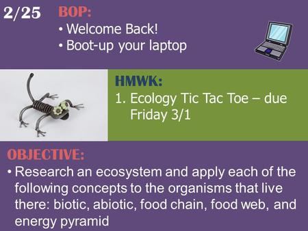 2/25 BOP: Welcome Back! Boot-up your laptop OBJECTIVE: Research an ecosystem and apply each of the following concepts to the organisms that live there: