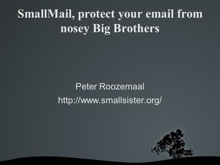 SmallMail, protect your  from nosey Big Brothers Peter Roozemaal