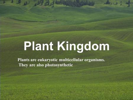 Plant Kingdom Plants are eukaryotic multicellular organisms. They are also photosynthetic.