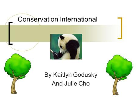 Conservation International By Kaitlyn Godusky And Julie Cho.